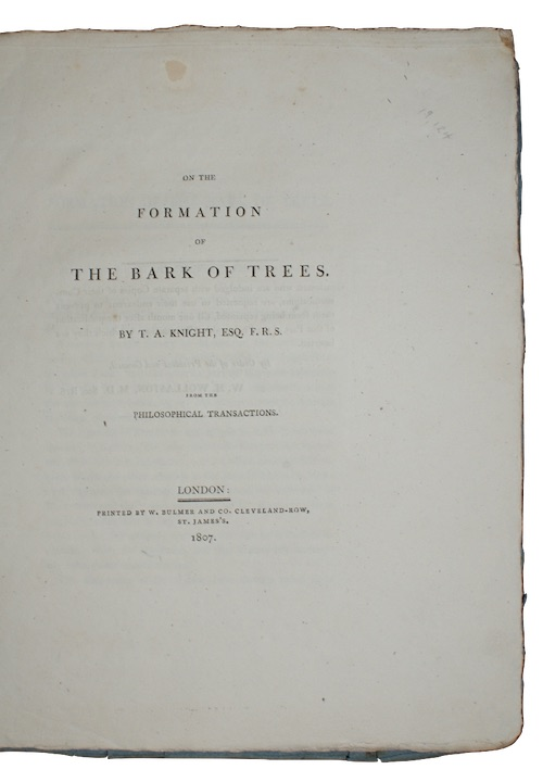 KNIGHT, T[homas] A[ndrew] - On the formation of the bark of trees