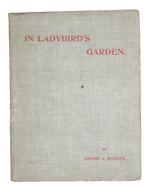 """Photo of """"In ladybird's garden"""""""