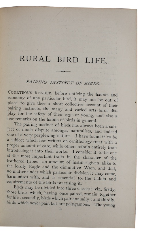 "Photo of ""Rural bird life: being essays ..."""