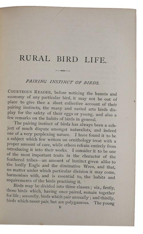 "Photo of ""Rural bird life: being essays ..."""
