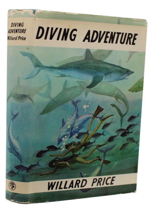 "Photo of ""Diving adventure"""