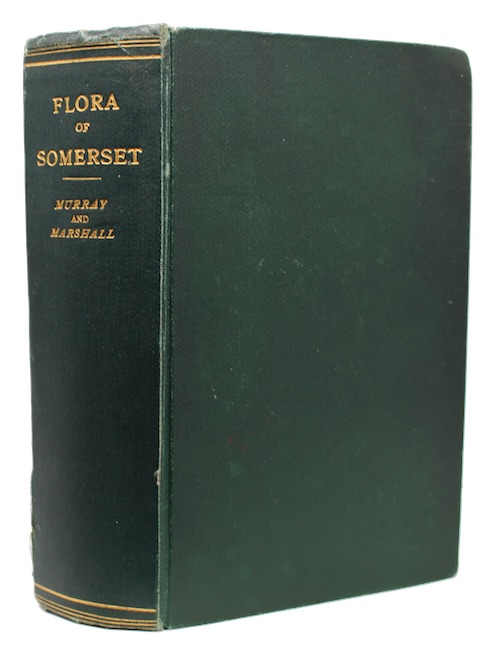 "Photo of ""The flora of somerset"""