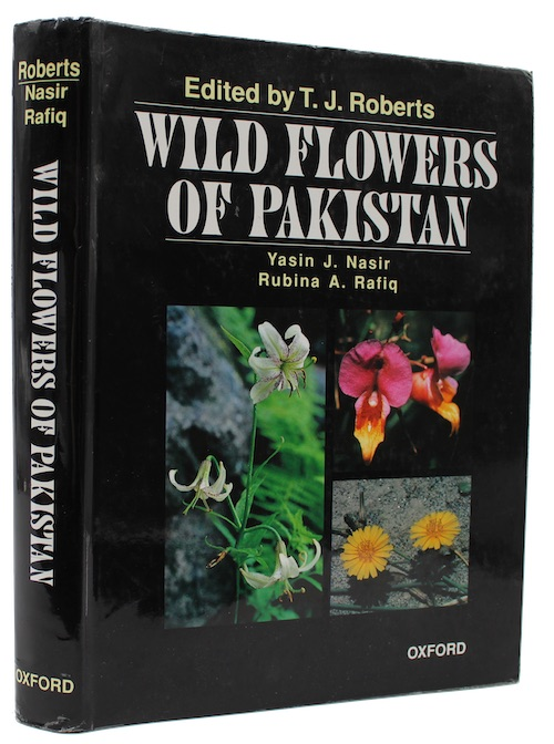 "Photo of ""Wild flowers of Pakistan"""